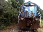 Bowersville Train